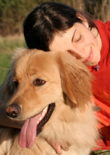 positive-dog-training-feature
