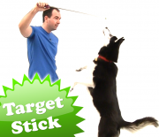 target_stick_feature